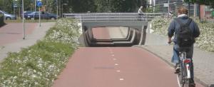 Fietstunnel Bleiswijk